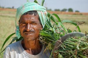 indian-farmer2